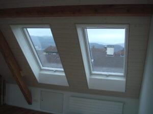 Dachfenster8